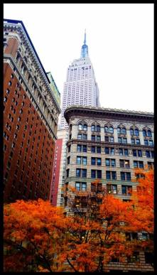 fall surrounded by / an empire state of mind / amazing new york © rashesh jethi